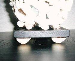 画像5: 珊瑚ランプ(A)