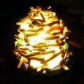 ランプシェード(珊瑚)