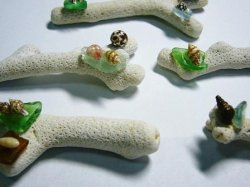画像2: 珊瑚箸置(シーグラス・5個組)
