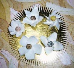 画像2: ミニ・フラワー貝(白5個組)